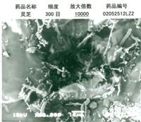 用振動式超微粉碎設(she)備(bei)粉碎的(de)300目靈芝粉在10000倍顯微鏡下的(de)觀察狀態